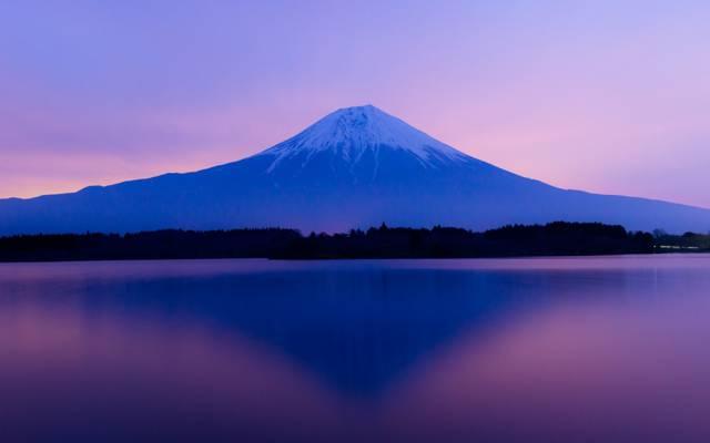 湖,富士山,天空,树木,日本,日落