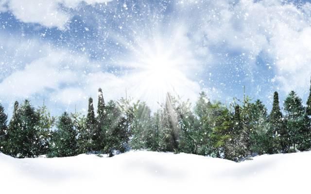 云,天空,太阳,雪花,树木,冬天,雪,光线,雪