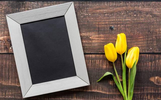 爱,木,框架,粉红色,浪漫,3月8日,郁金香,黄色,黄色郁金香,鲜花