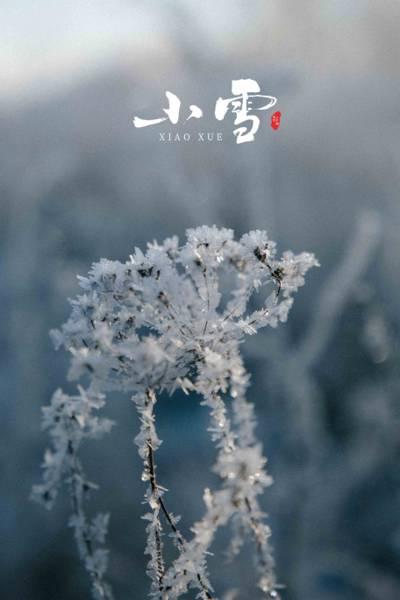 24节气小雪时节
