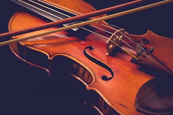 音乐,小提琴,宏