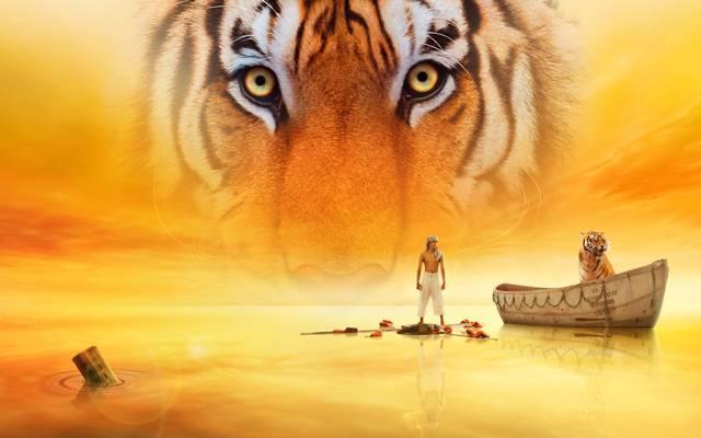 壁纸老虎,生命的PI,水,皮的生命,电影