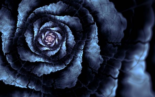 花,裂,花瓣,线,艺术